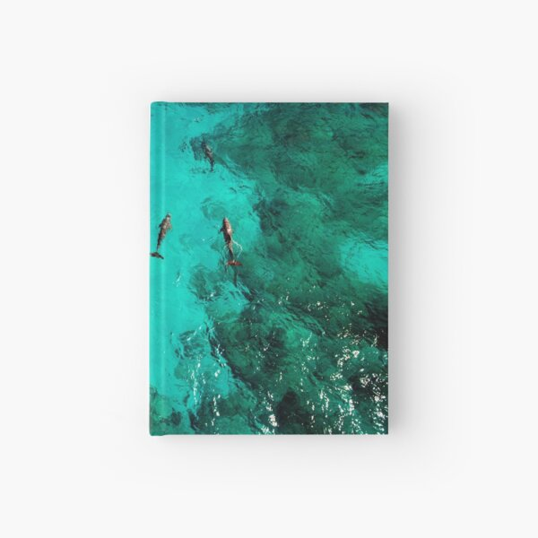 Dolphins Playing near Isla Mujeres Hardcover Journal