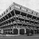 Geelong Government Building by Joseph Darmenia