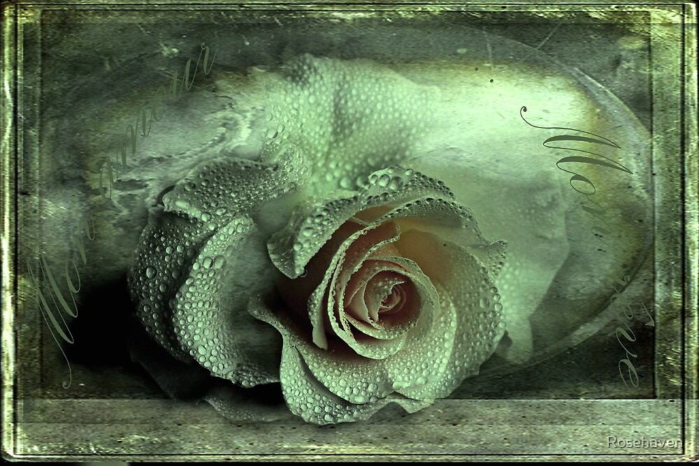 """""""Mon Amour ...Mon Reve...."""" by Rosehaven"""