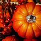 Fall harvest  by LudaNayvelt