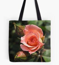 Orange Rose and Buds Tote Bag