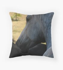 Andre and Friend Throw Pillow