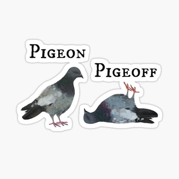 Dove / Pigeon Pigeoff / Taube on off Sticker