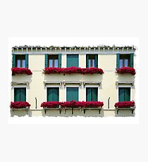 Window Boxes Photographic Print