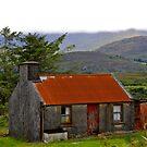 homestead by Edward  manley