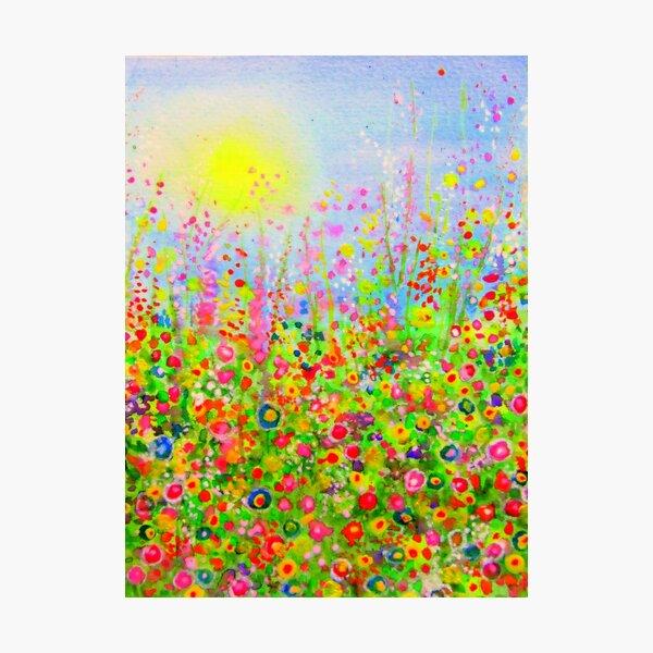 Flower Meadow Brilliant Photographic Print