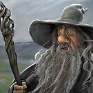 The Wizard by Steven Thomason