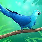 Spix's Macaw by Tami Wicinas
