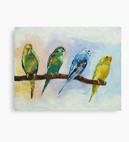 Four Parakeets Canvas Print