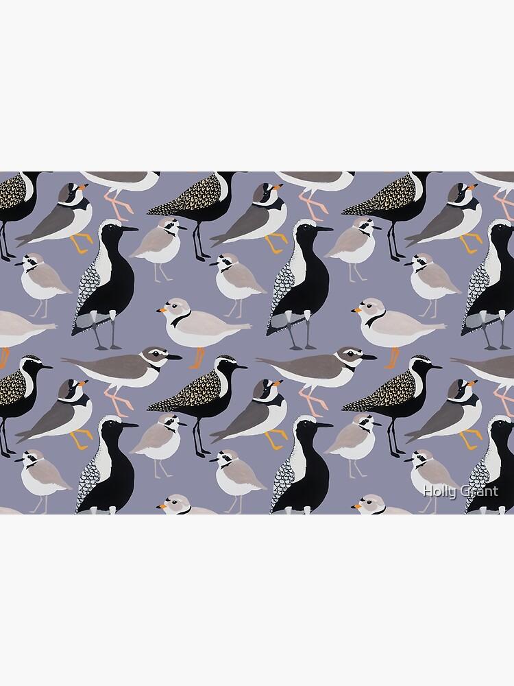 Plethora of Plovers by LadyElizabeth