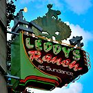 Leddy's Ranch Store Sign by ArtCooler