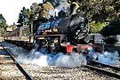 Zig Zag Railway | Lithgow | New South Wales | Australia | Steam Engine 1072 by DavidIori