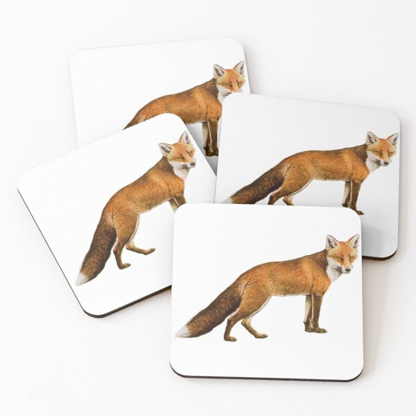 Red Fox Coasters (Set of 4)