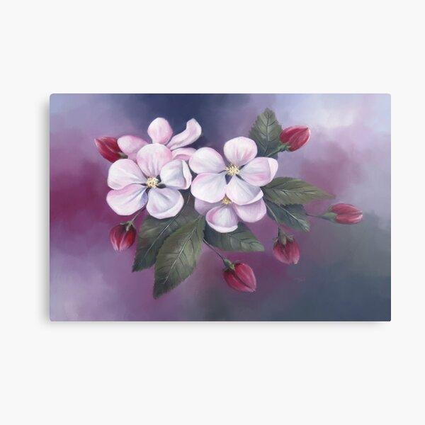 Pastel painting of Apple Blossoms Canvas Print