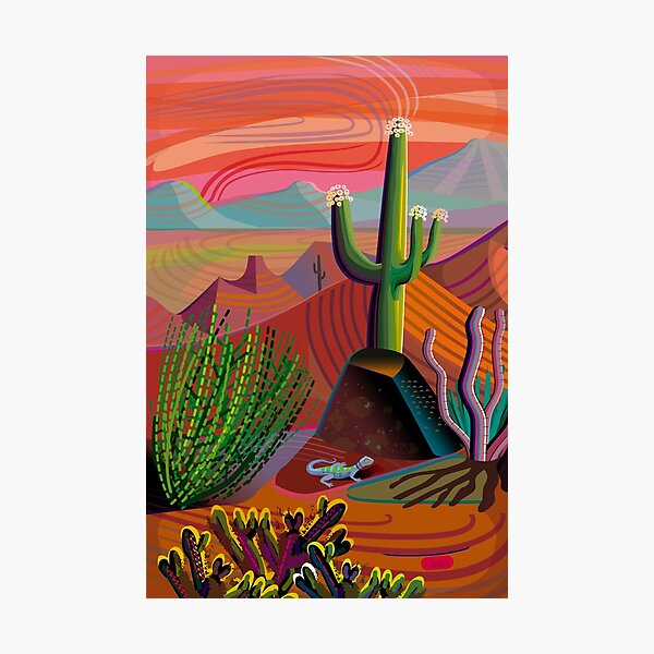 Gila River Desert Sunset Photographic Print