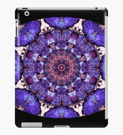 Barnie Paw Prints Kaleidescope 13 iPad Case/Skin