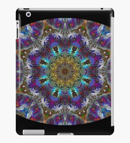 Barnie Paw Prints Kaleidescope 4 iPad Case/Skin