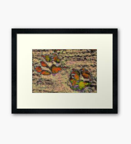 Paw Prints as Butterflies Framed Print