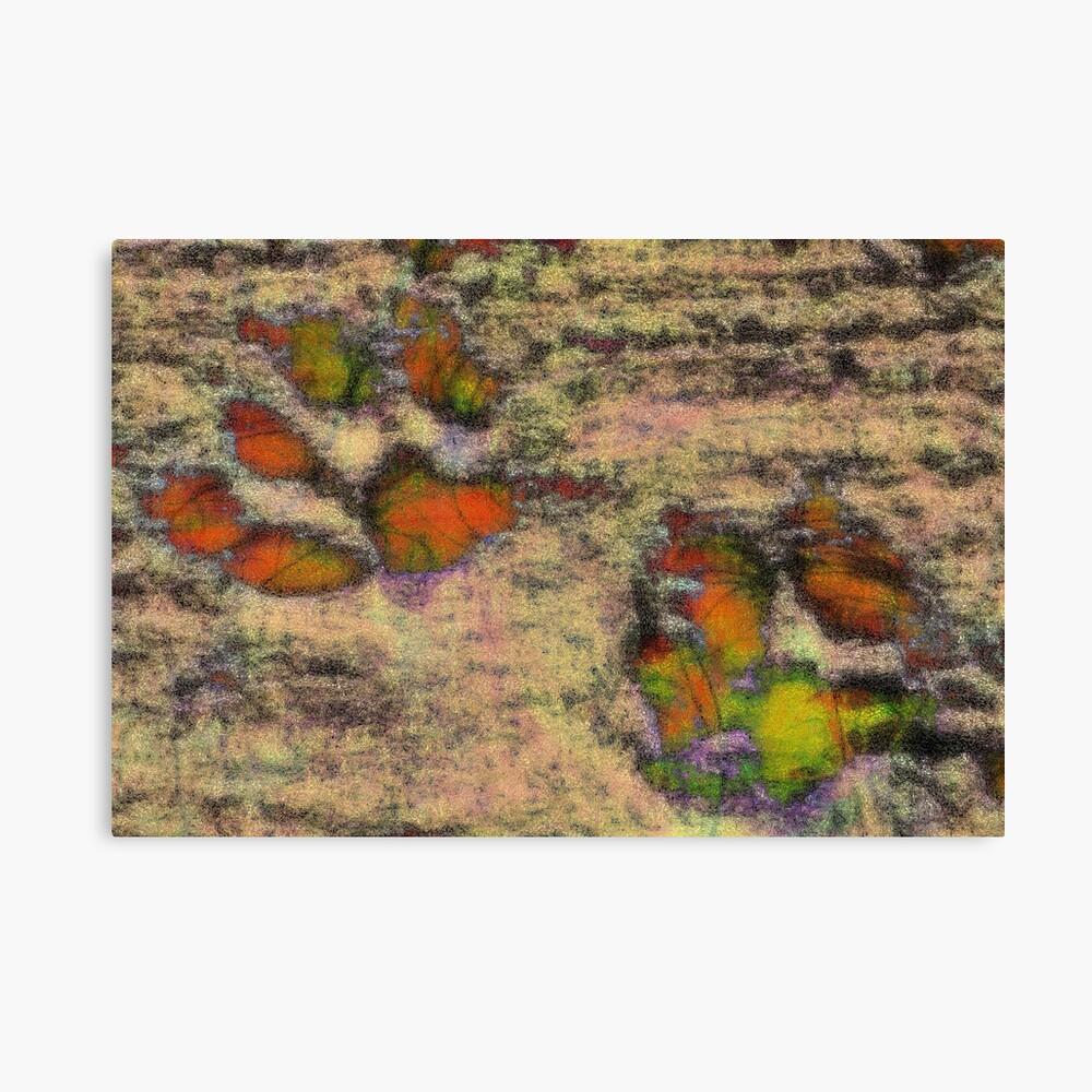 Paw Prints as Butterflies Canvas Print