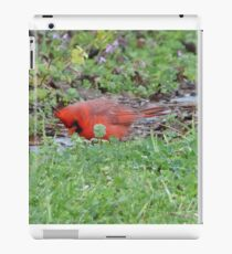 Hunting bird. iPad Case/Skin