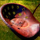Old Plough Seat by Larry Trupp