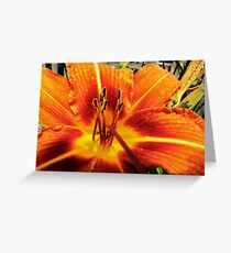 Day Lily For....AndreaEL Greeting Card