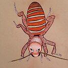 Doodle Bug by Louisa McHugh
