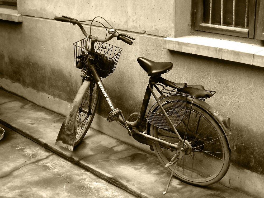 Chinese Bike by Jay Reed
