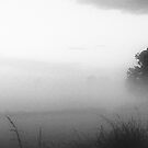 June mist at Clifton-Upon-Dunsmore in Black and white  by bywhacky