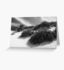 Dune Ecology  Greeting Card