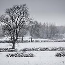 Snow over Clifton by bywhacky