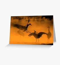 Dancing In The Mist Greeting Card