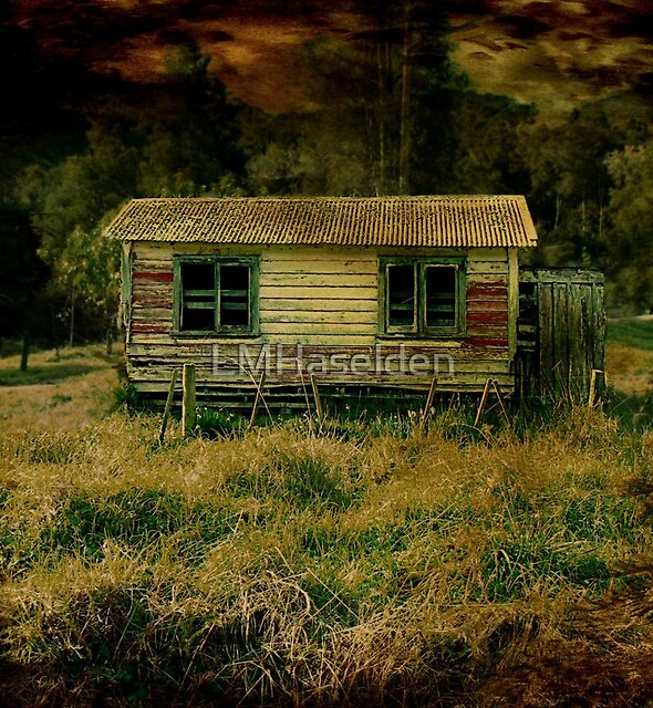 Little House by Lynne Haselden