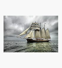 Gulden Leeuw Photographic Print