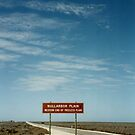 The Nullarbor Is Plain To See by David McMahon