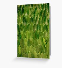 Leaves - Nature Greeting Card