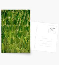 Leaves - Nature Postcards