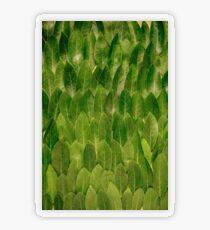 Leaves - Nature Transparent Sticker