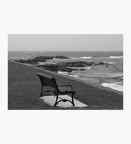Romantic bench near the ocean Photographic Print