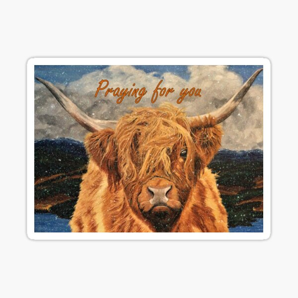 Highland Cow in Light Snow - Praying for You Card Sticker