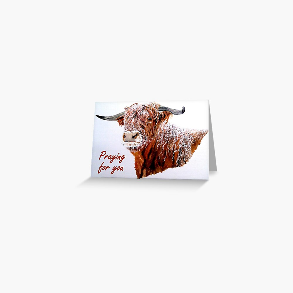 Snowy Highland Cow - Praying for You Card  Greeting Card