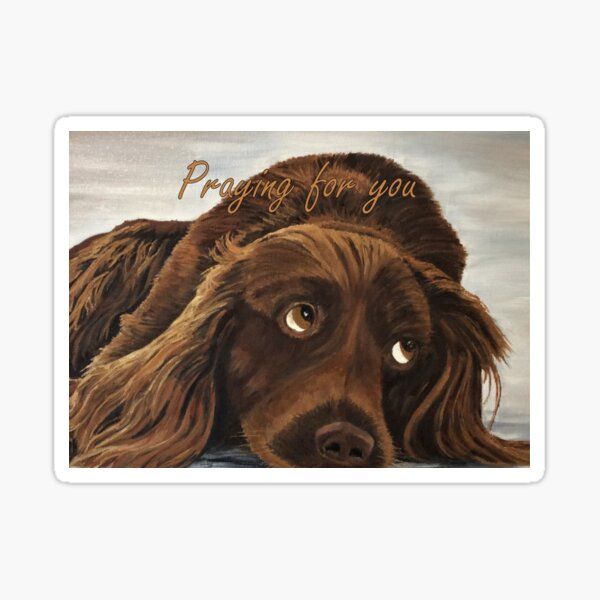 Spaniel Appeal - Praying for You Card Sticker