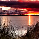 Stormy Sunset Pano by Sheldon Pettit