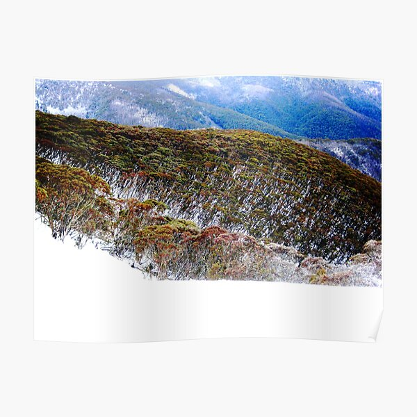 Hotham Heights Poster