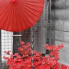 Japan by Caprice Sobels
