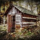 The Root Cellar by Christine Annas