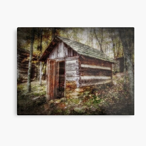 The Root Cellar Metal Print