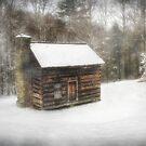 Snowed In by Christine Annas