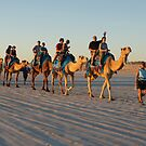 camel ride at sunset by bobby1