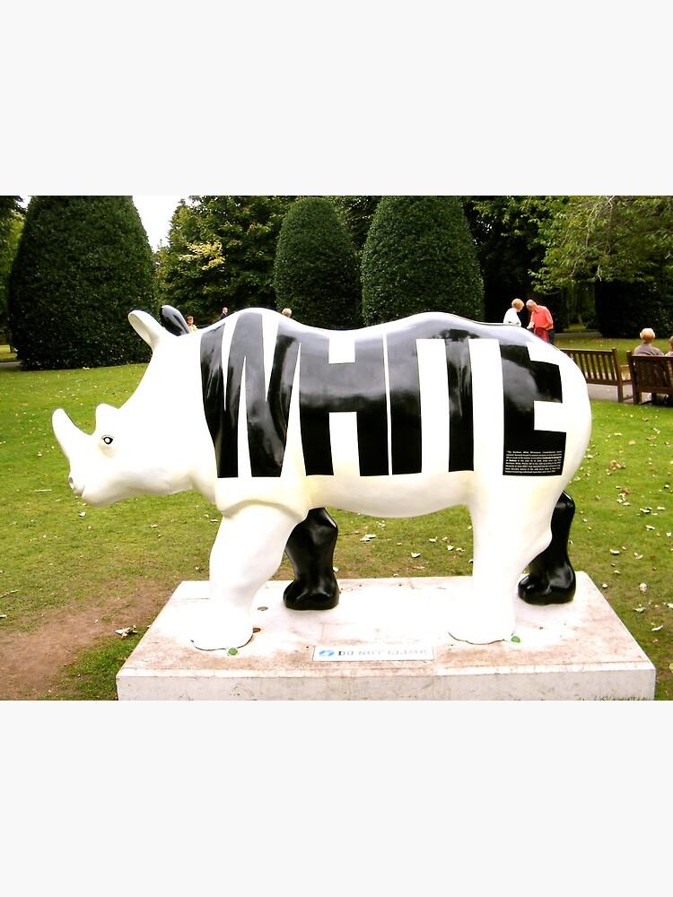 WHITE by robsteadman